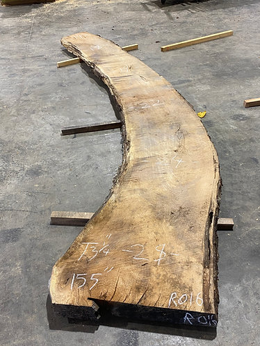 Red Oak #16 long curve