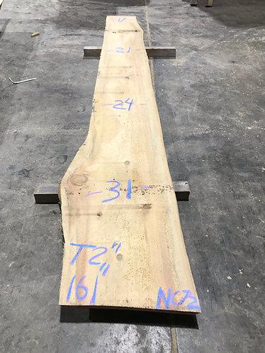 New Cypress #72