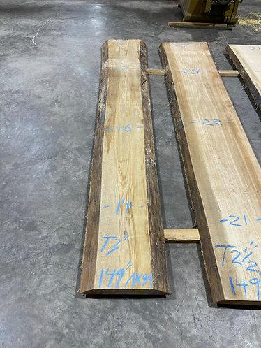 New Cypress #89