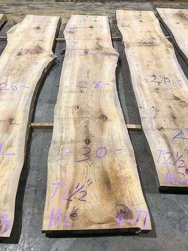New Cypress #77