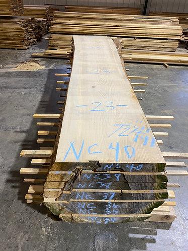 New Cypress #40