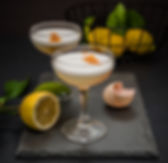 david rogers_noe_cocktails-4149_gin sour