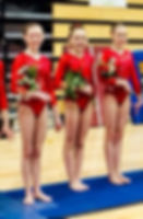 Kentucky Gymnastics Academy competitive team