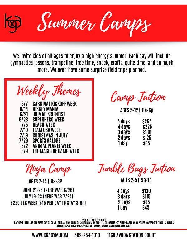 Summer Camp Flyer.png
