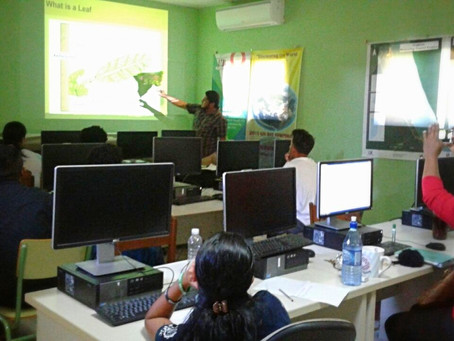 FRM Interns: From the Field to the Classroom