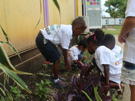 Stimulating Young Environmental Stewards