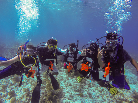 UB's Scientific Diving Program: Making Safety Our Priority
