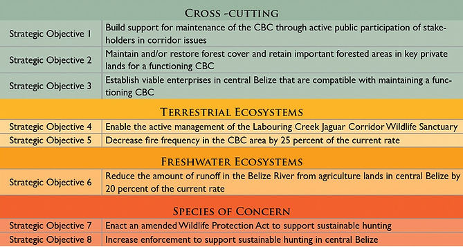 Central Belize Corridor Conservation Action Plan strategic objectives