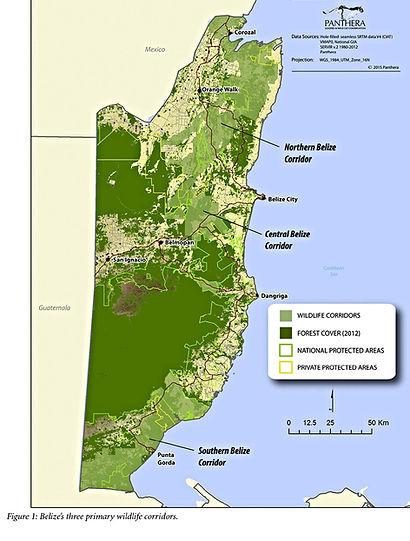 Central Belize Corridor map