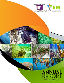 Annual Report Cover 15-16_edited.png