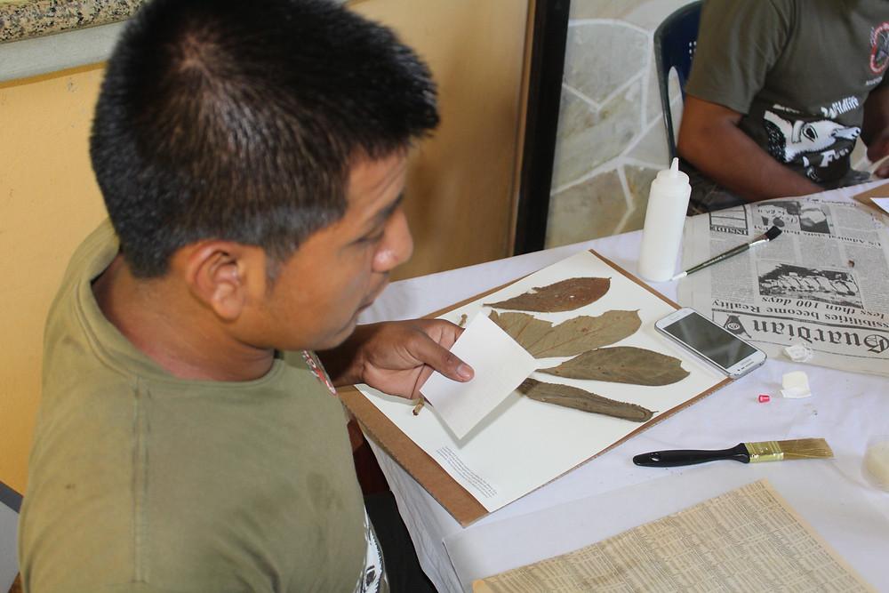 Mounting specimens