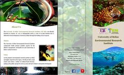 UB ERI Brochure Cover
