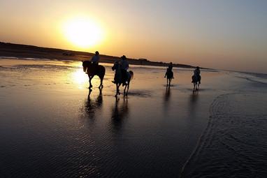 Zachody słońca nad Morzem Arabskim