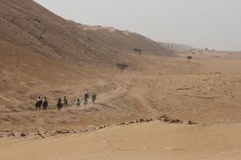 W głąb pustyni