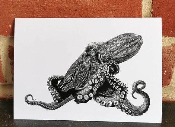 'Octopus' card