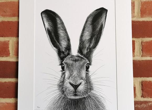 'Norfolk Hare' print