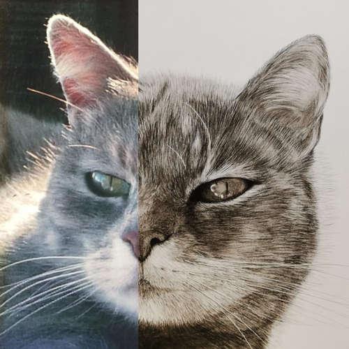 Moumoune photo vs drawing