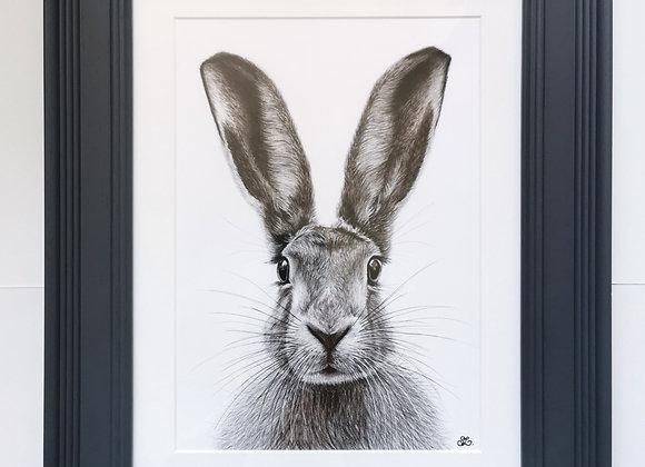 'Norfolk Hare' Original