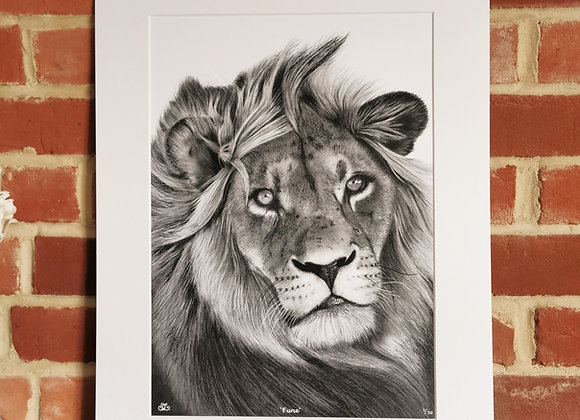 'Fierce' Lion print