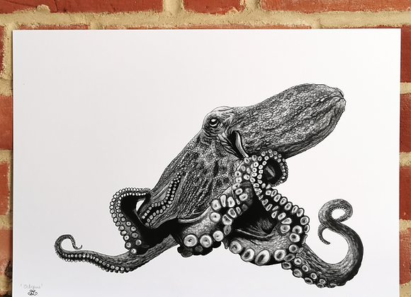 'Octopus' print