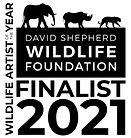 DSWF artist of the year finalist 2021