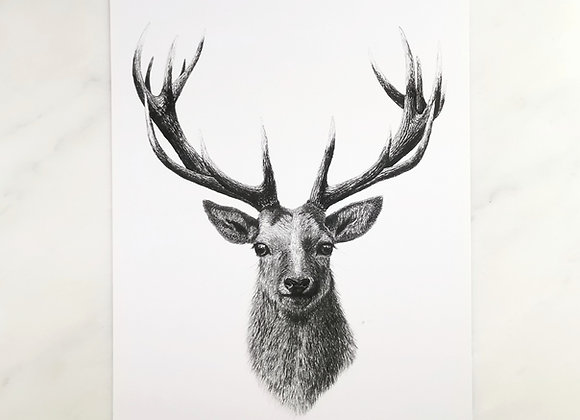 Classic Stag print
