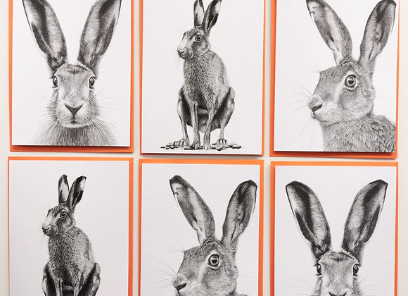 'Bunch of Hares' card pack