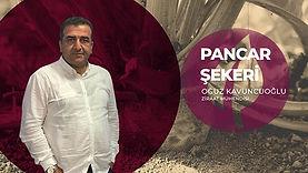 pancar_sekeri.jpg