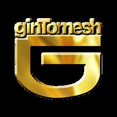 GINTOMESH_LOGO_PNG.png