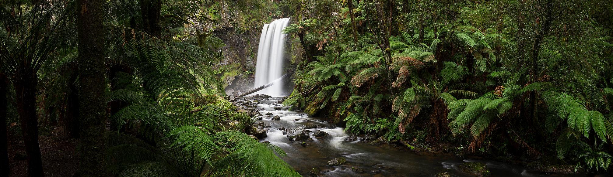 Otway_Rainforest_Panorama2.jpg
