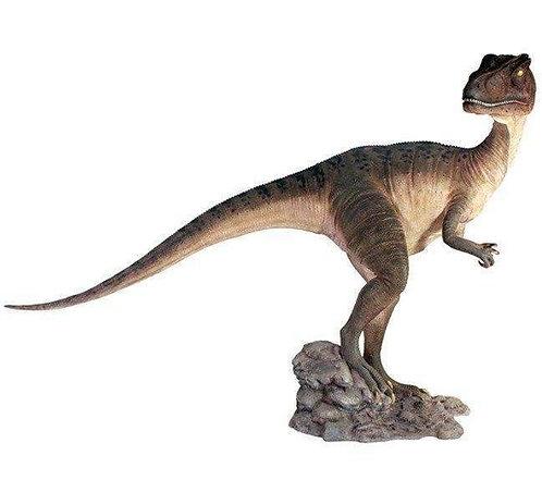 Allosaurus / Head Turned