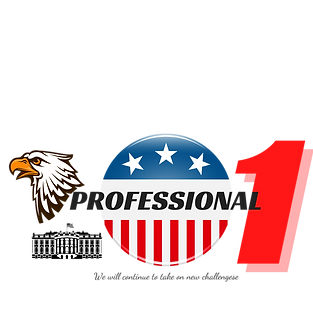 PROFESSIONAL (4).png