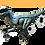 Thumbnail: Raptor