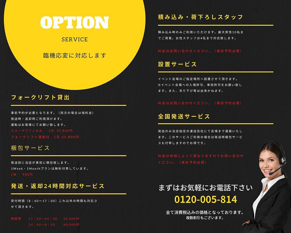 PROFESSIONALのコピーのコピー (13).jpg