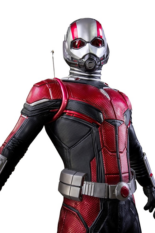 Ant Man and Wasp / 250cm