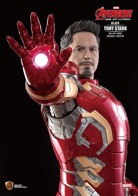Iron Man Avengers / Tony Stark