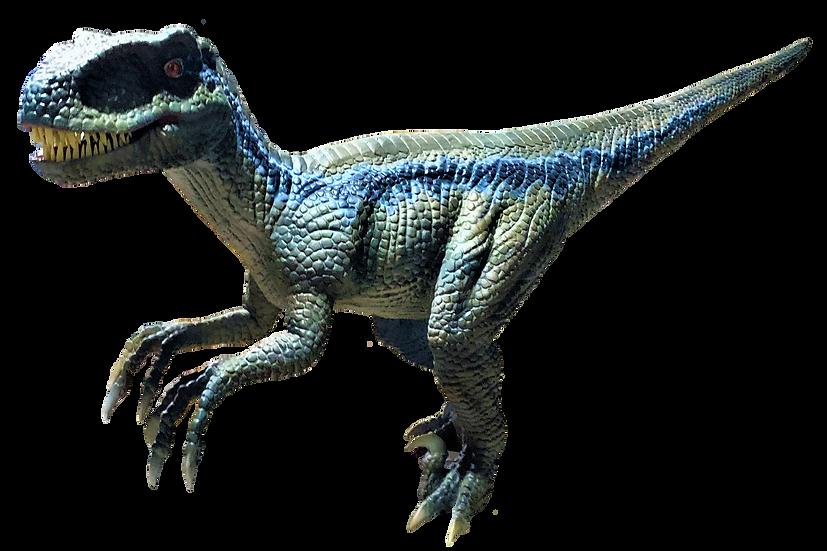 動く恐竜  ラプトル / 2m