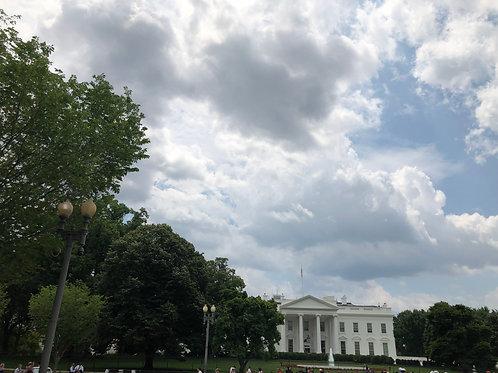 さりげなくホワイトハウス