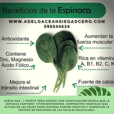 Beneficios del consumo de espinacas