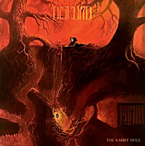 ALBUM REVIEW  THE RABBIT HOLE THE GREAT DISCORD