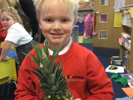 Year 1 Pineapple of Bravery!