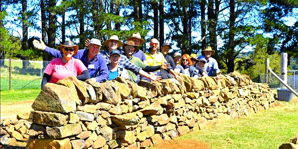 Autumn Dry Stone Wall Construction with Jon Moore