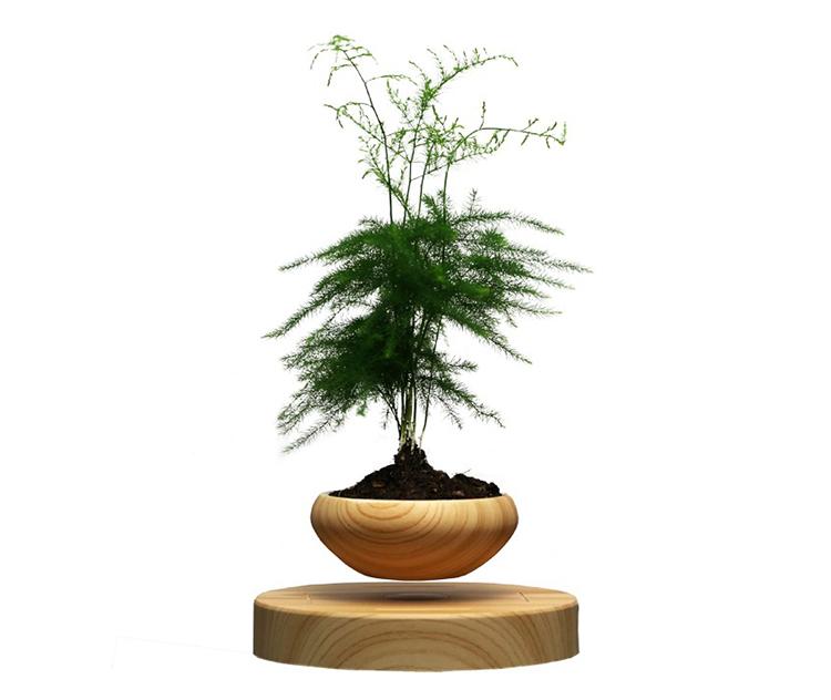 Levitating plant pot (20)-1
