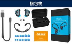 AmazonImage-Shield.005