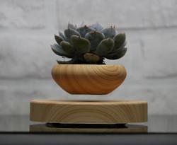 Levitating plant pot (17)