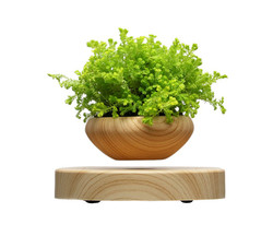 Levitating plant pot (18)