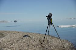 Nikon 600mm on walrus duty, Svalbard