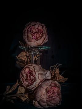 Bloemenfotografie-Fine Art