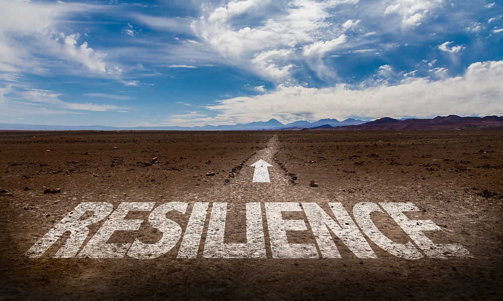 Post-Election Resiliency: How to Grow THROUGH