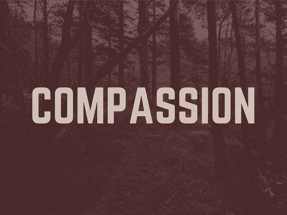 Compassion In Work Makes a BIG Difference; Soft Skills Matter Too